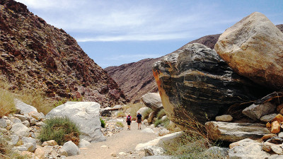 We ventured out to Borrego Springs, couple hours from Palm Springs, and spent a few hours trekking the Palm Canyon Trail.  Wear sunscreen and bring plenty of water!