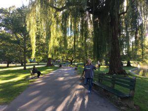 best things to do in boston