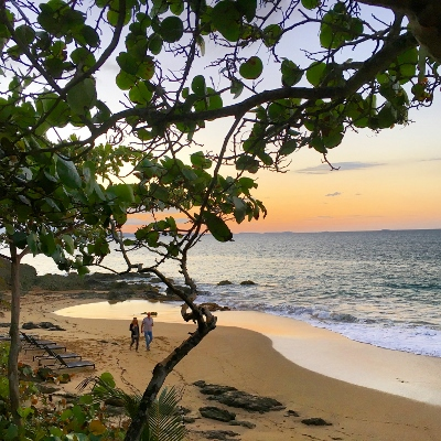 24 Hours on Vieques Island