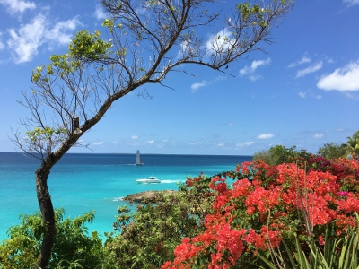 Daytrip to Anguilla