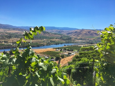 Road Trip to Wenatchee — Things to do in Wenatchee WA