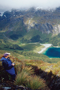 Heading to New Zealand?  Contact Black Sheep Touring