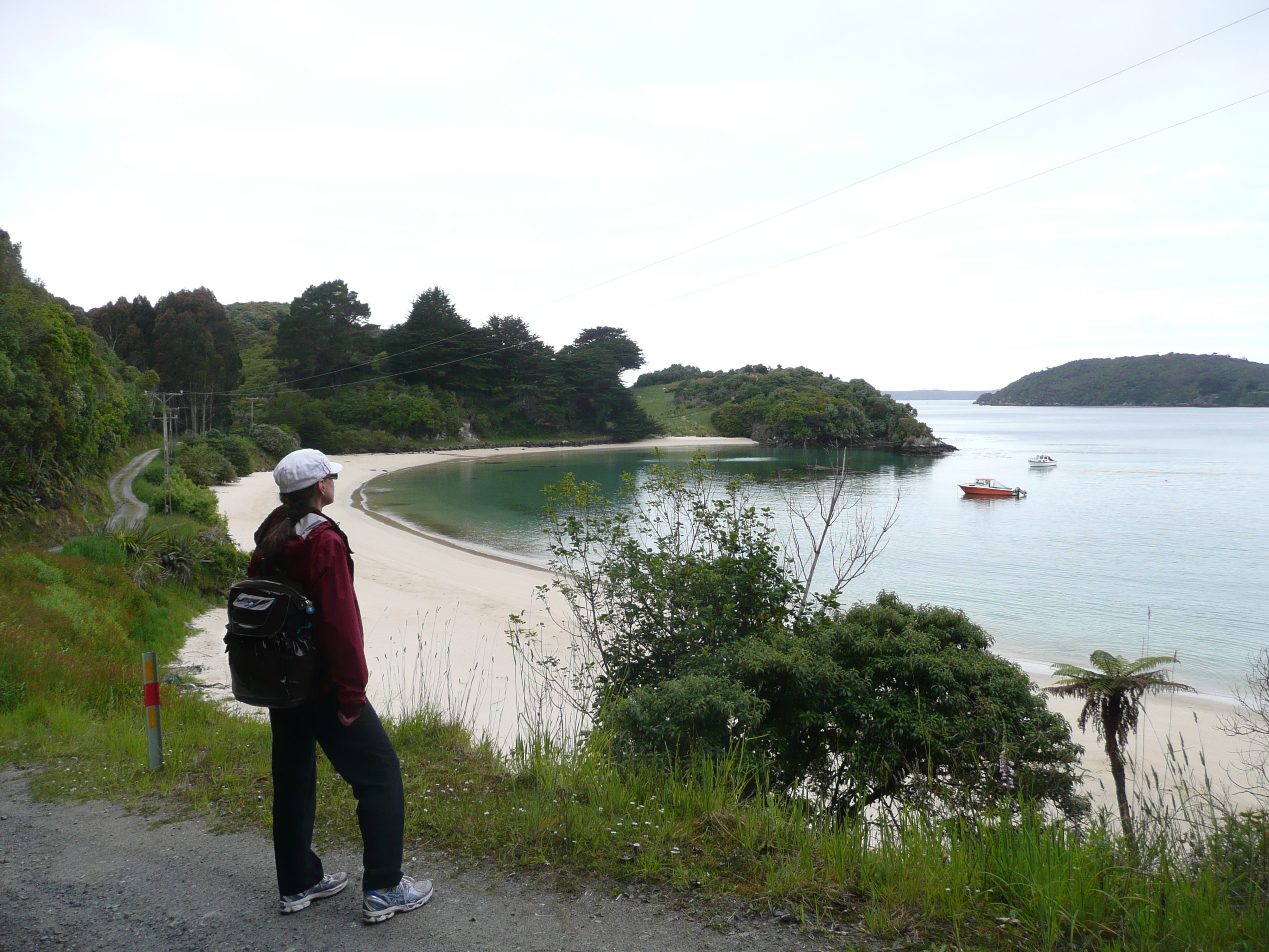 Stewart Island – A Naturalist's Eco Paradise