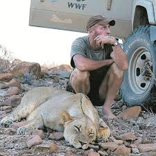 Namibia's Lion Hero