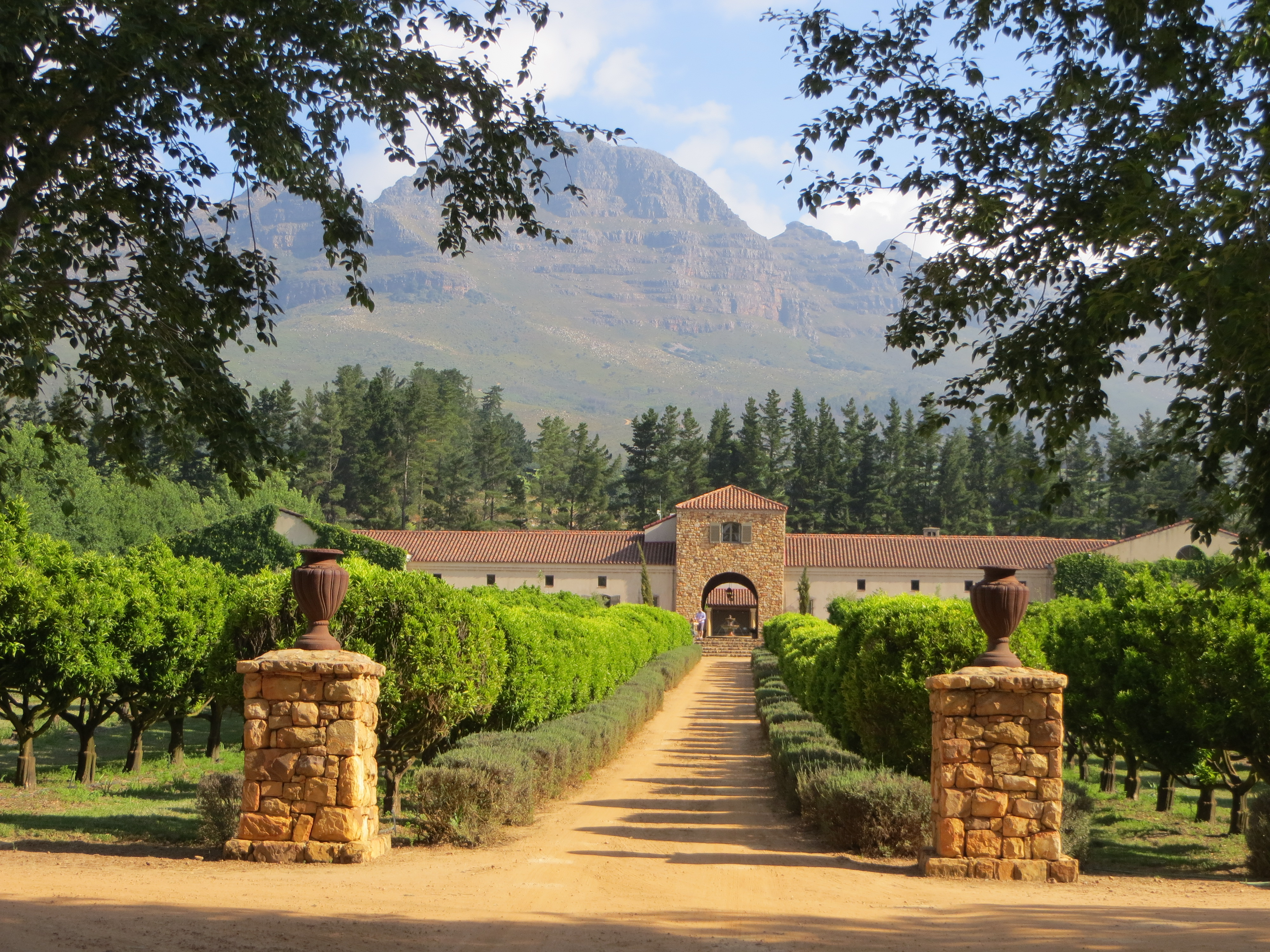 Top Wineries of Stellenbosch