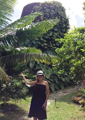 Vanessa Recommends…Nevis To Do's