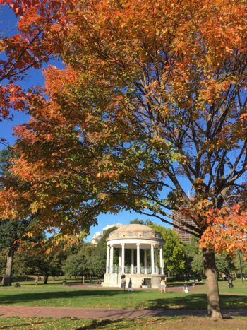 Best of Boston – Dozen Things to Do!