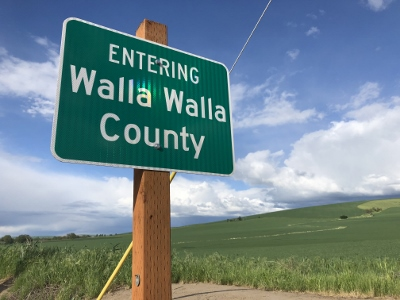 Top Wineries in Walla Walla