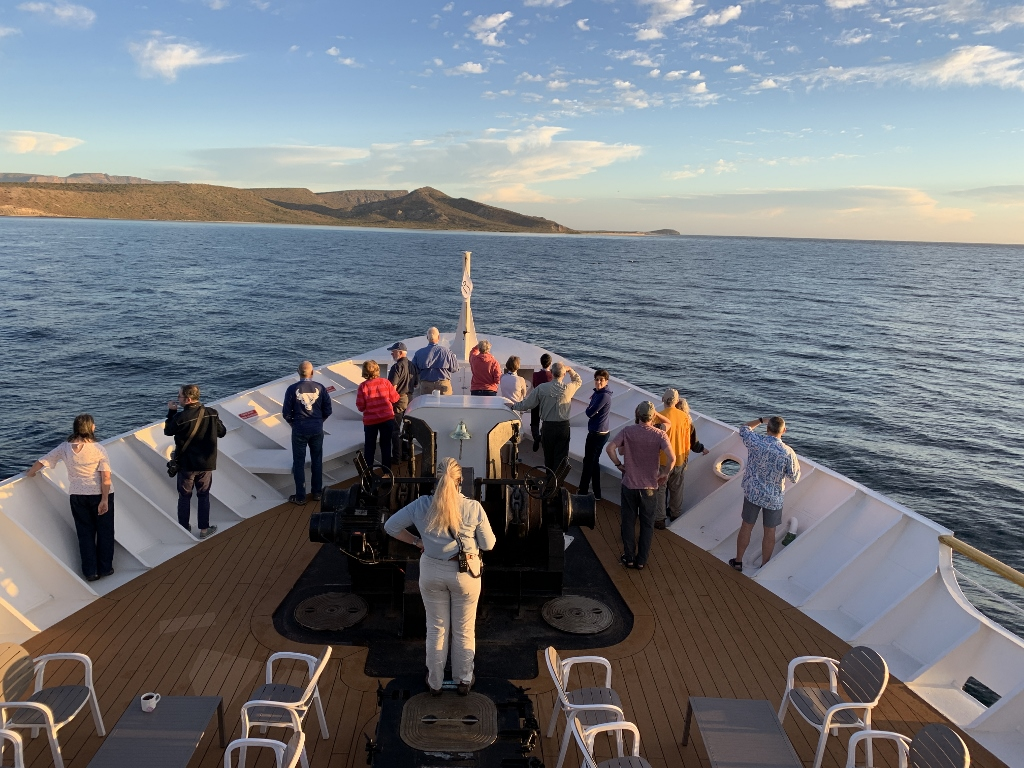 uncruise baja adventure